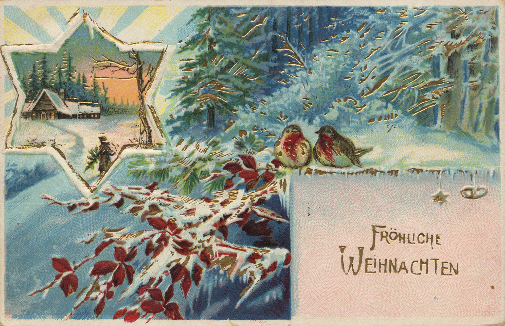 Weihnachten, Zweige, Sträusse, Girlanden, Vögel, Landschaft - Zeno.org