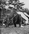 Brady, Mathew B.: Präsident Lincoln bei Sharpsburg