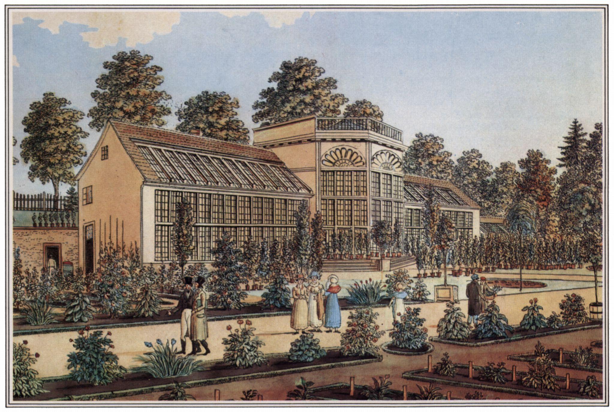 Besemann Christian Andreas Göttingen Botanischer Garten Zweites