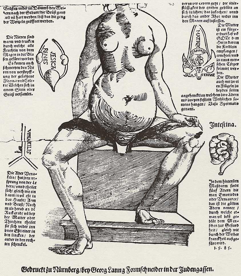 Lang, Georg: Anatomische Darstellung des weiblichen Körpers ...