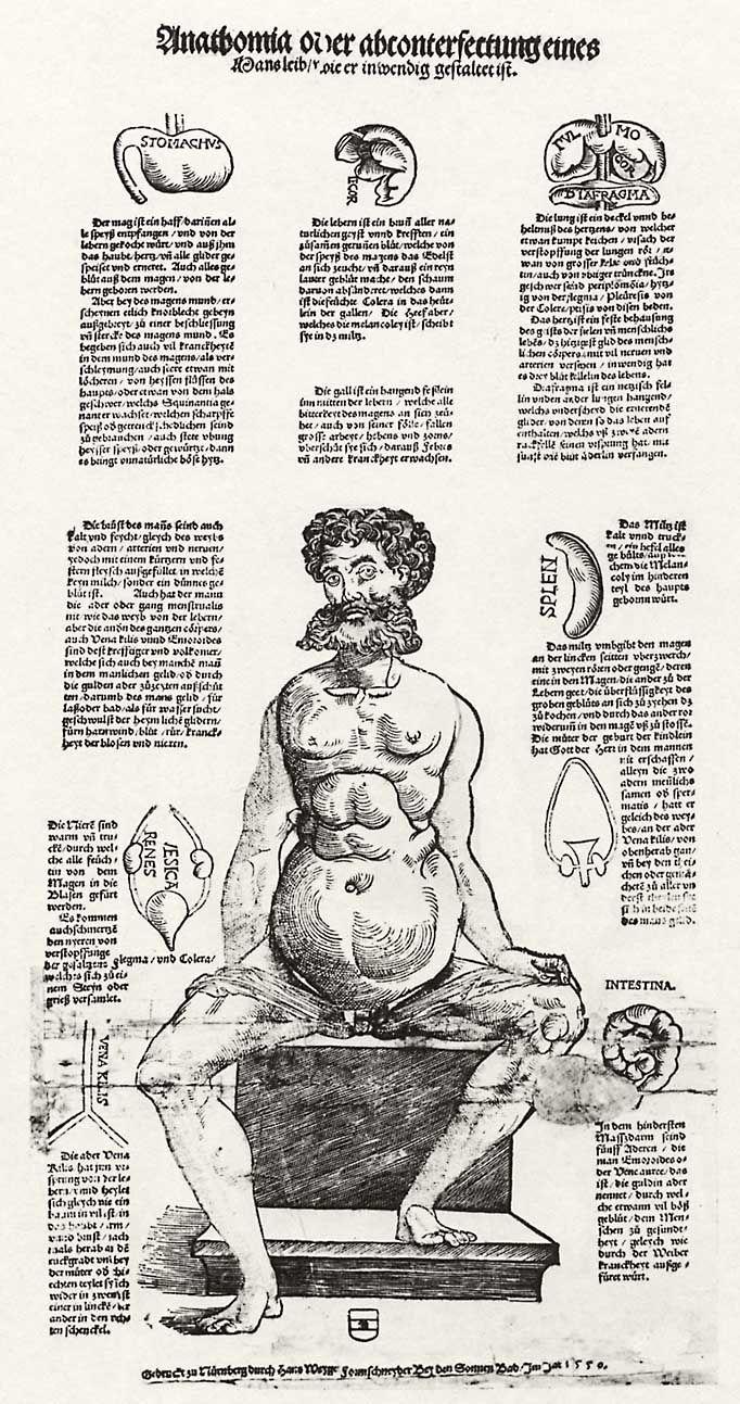 Weigel d. Ä., Hans: Anatomie des Mannes - Zeno.org